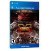 خرید بازی دیجیتال Street Fighter V Arcade Deluxe Edition برای PS4